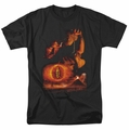 Lord of the Rings t-shirt Destroy The Ring mens black