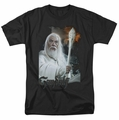 Lord of the Rings t-shirt Gandalf mens black