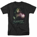 Lord of the Rings t-shirt Samwise The Brave mens black