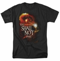 Lord of the Rings t-shirt You Shall Not Pass mens black