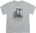 Lord of the Rings youth teen t-shirt Gandalf The Grey Silver