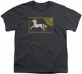 Lord of the Rings youth teen t-shirt Rohan Banner Charcoal