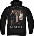 Numbers pull-over hoodie Equations adult black