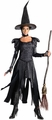 Oz Wicked Witch of the West adult deluxe costume