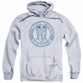 Power Rangers pull-over hoodie Angel Grove Hs adult athletic heather