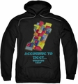 Quantum Leap pull-over hoodie According To Ziggy adult black