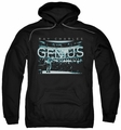 Ray Charles pull-over hoodie Packed House adult black