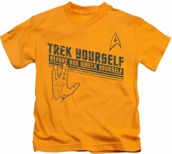 Star Trek kids t-shirt Trek Yourself gold