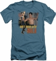 Star Trek TOS slim-fit t-shirt Don't Mess With Sulu mens slate
