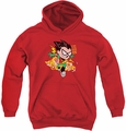 Teen Titans Go youth teen hoodie Robin red