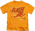 The Flash kids t-shirt Speed Lines gold