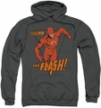 The Flash pull-over hoodie Whirlwind adult charcoal