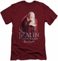 The Hobbit slim-fit t-shirt Balin mens cardinal