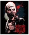 The Walking Dead Zombie Fleece Throw Blanket