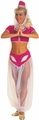 I Dream of Jeannie adult costume