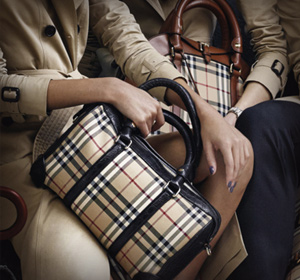 Burberry Bags, Belts, and Scarves