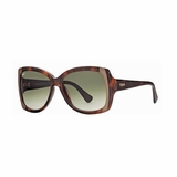 Tod's 0041/52P Havana Gradient Sunglasses with Case - Brown
