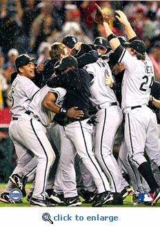2005 ALCS Chicago White Sox Team Celebration 8x10 Photo