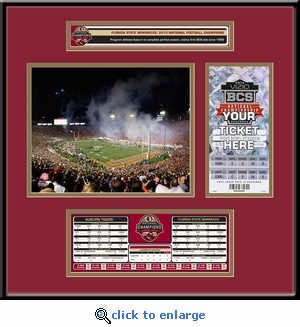 2014 BCS Championship Game Ticket Frame with Stat Box - Florida State Seminoles