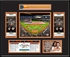 2017 MLB All-Star Game Ticket Frame - Miami Marlins