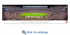 Alabama Crimson Tide Football - 50 Yard Line - Panoramic Photo (13.5 x 40)