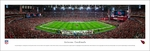 Arizona Cardinals - 50 Yard Line - Panoramic Photo (13.5 x 40)