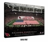 Arizona Cardinals Personalized State Farm Stadium Print