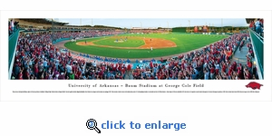 Arkansas Razorbacks Baseball - Panoramic Photo (13.5 x 40)