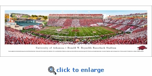Arkansas Razorbacks Football - Stripe - Panoramic Photo (13.5 x 40)