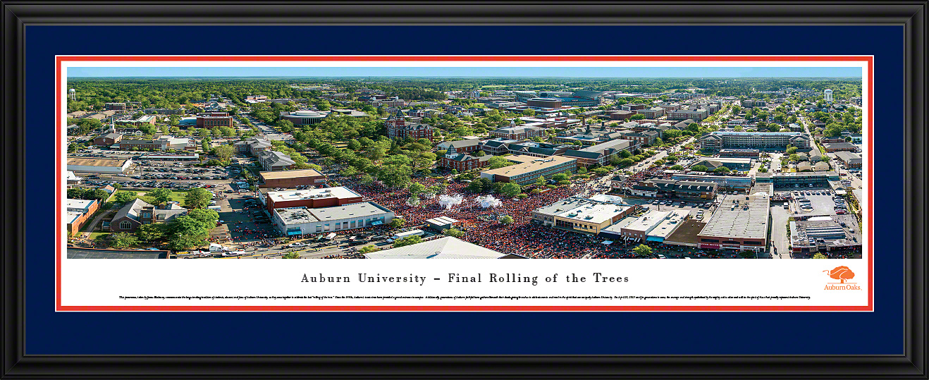 Auburn Oaks Panoramic Photo 135 X 40