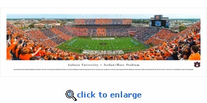 Auburn Tigers Football - Stripe The Stadium - Panoramic Photo (13.5 x 40)