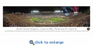 BCS 2014 National Football Champions - Florida State Seminoles - Panoramic Photo (13.5 x 40)