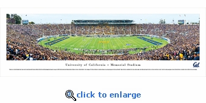California Golden Bears Football - Panoramic Photo (13.5 x 40)
