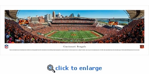 Cincinnati Bengals - 50 Yard Line - Panoramic Photo (13.5 x 40)