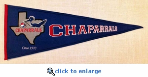 Dallas Chaparalls Traditions Wool Pennant (13 x 32)