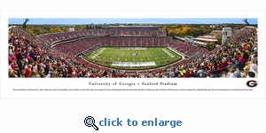 Georgia Bulldogs Football - 50 Yard Line - Day - Panoramic Photo (13.5 x 40)