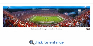Georgia Bulldogs Football - 50 Yard Line - Twilight - Panoramic Photo (13.5 x 40)