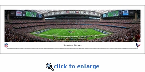 Houston Texans - 50 Yard Line - Panoramic Photo (13.5 x 40)
