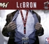 Miami Heat NBA Lanyard Key Chain and Ticket Holder - LeBron James