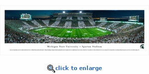 Michigan State Spartans Football - Stripe - 50 Yd - Panoramic Photo (13.5 x 40)