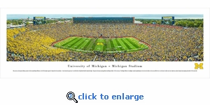 Michigan Wolverines Football - 50 Yard Line - Panoramic Photo (13.5 x 40)