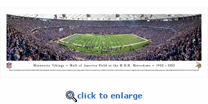 Minnesota Vikings - 50 Yard Line - Finale - Panoramic Photo (13.5 x 40)