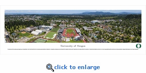 Oregon Ducks Football - Aerial - Panoramic Photo (13.5 x 40)