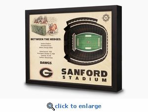 Sanford Stadium 3-D Wall Art - Georgia Bulldogs Football
