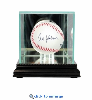 Single Baseball Display Case - Black