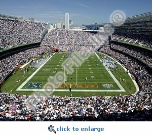 Soldier Field Chicago Bears 8x10 Photo