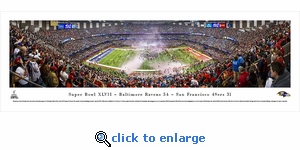 Super Bowl 2013 - Baltimore Ravens Champions - Panoramic Photo (13.5 x 40)