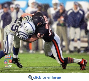 Super Bowl 41 Chicago Bears Brian Urlacher 8x10 Photo