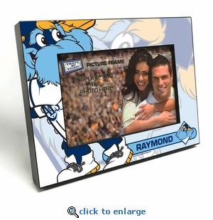 Tampa Bay Rays Mascot 4x6 Picture Frame - Raymond