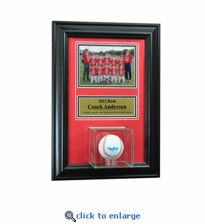 Wall Mounted Baseball Case with 5x7 and Engraving Plate for Individual Award
